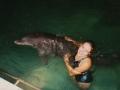Ольга Дороганич с дельфином