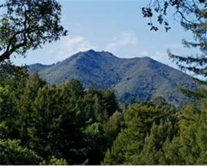 Гора Тамалпаис